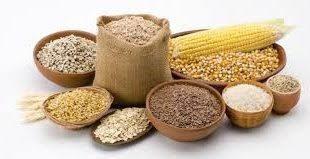 توزیع عمده دانه روغنی ایران