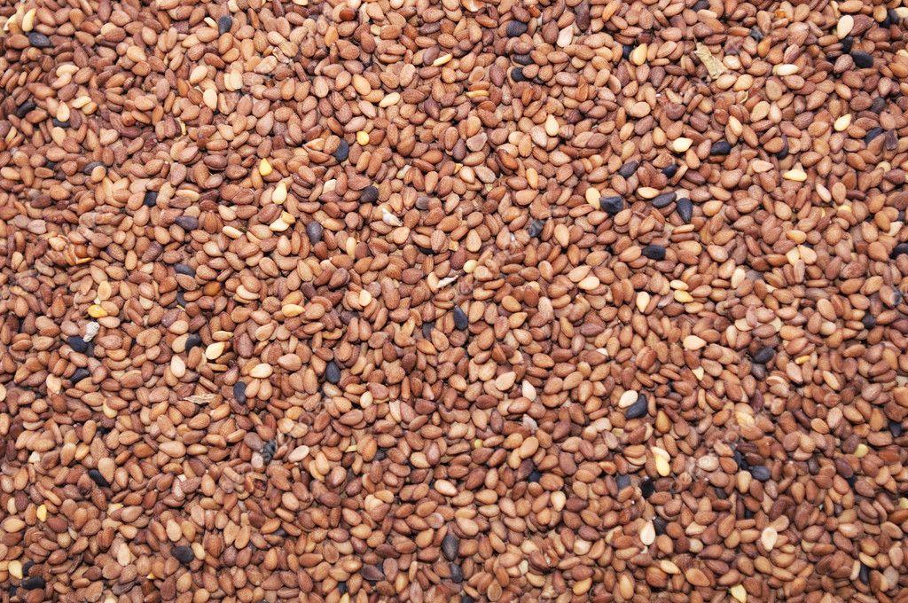 قیمت دانه روغنی کنجد سفید و قهوه ای ایرانی