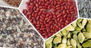 فروش انواع دانه های روغنی
