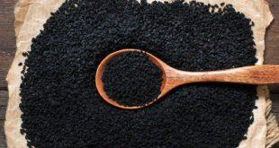 فروش سیاهدانه هندی